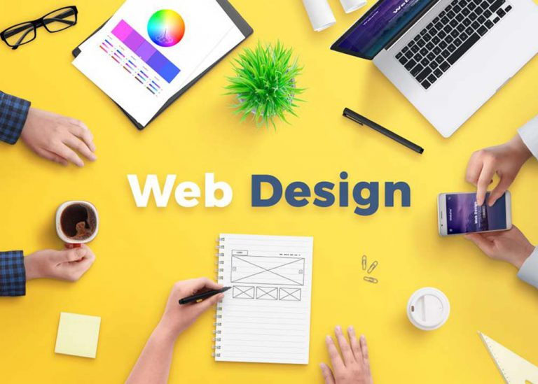 damiflex-solution-web-design development